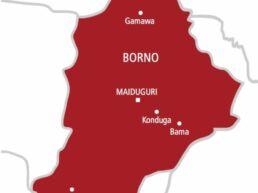 Boko Haram: Police restrict vehicular movements in Borno